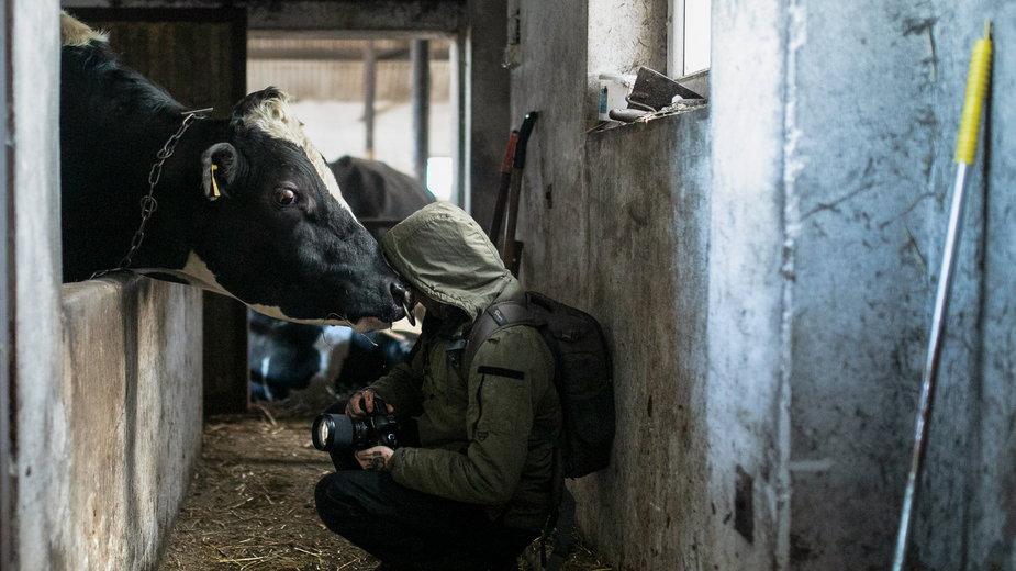 Andrew Skowron w swoich zdjęciach pokazuje prawdziwą cenę hodowli zwierząt, fot. Andrew Skowron