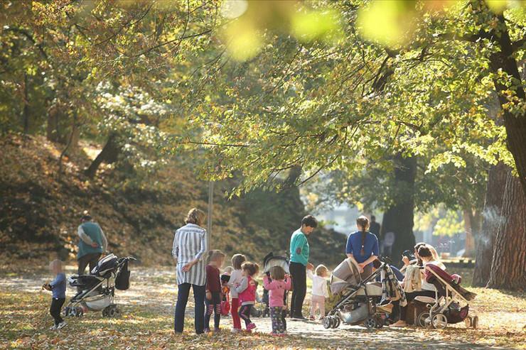 Deca majke park