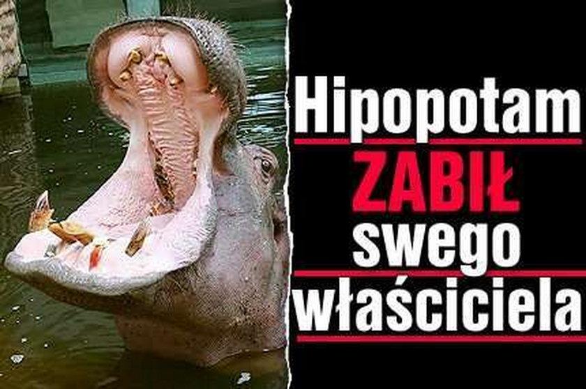 Hipopotam zabił swego właściciela