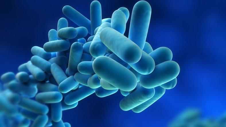 Skażenie bakterią E.coli? Egipt: To nie my!