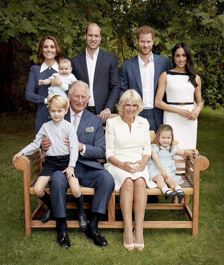 Kraljevska porodica, portret, Princ Čarls, Princ Hari, Princ Vilijam, Kejt Midlton, Megan Markl