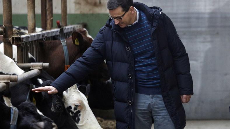 Premier Mateusz Morawiecki podczas wizyty w gospodarstwie rolnym w Rębiszewie