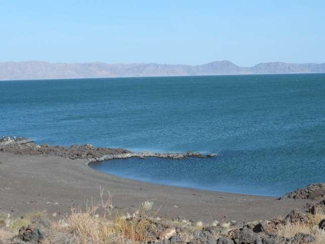 Lake Turkana is a sight to behold and teems with wildlife ranging from flamingo, crocodile to a variety of fish. (Facebook)