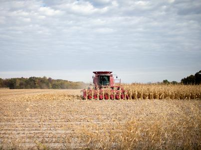 Organizatorem platformy do sprzedaży towarów rolnych ma być Giełda Papierów Wartościowych