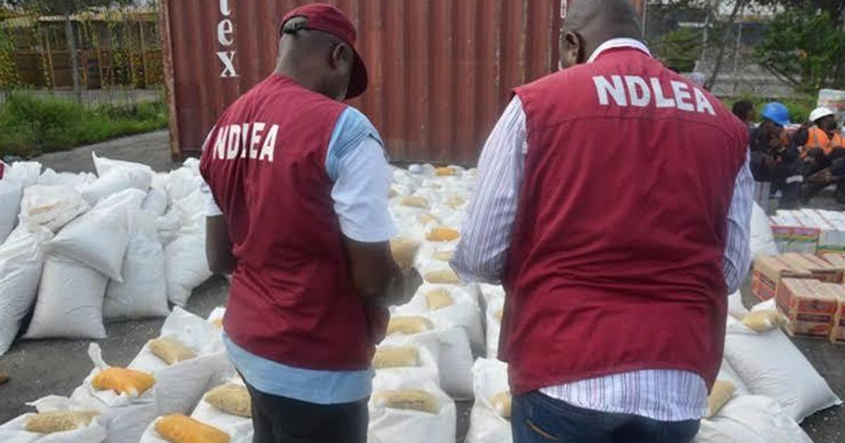 Imo NDLEA confirms arrest of alleged notorious drug dealer - Pulse Nigeria