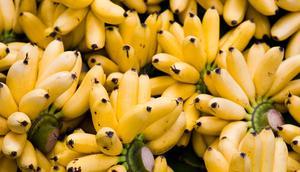 Bananas help you fall asleep faster