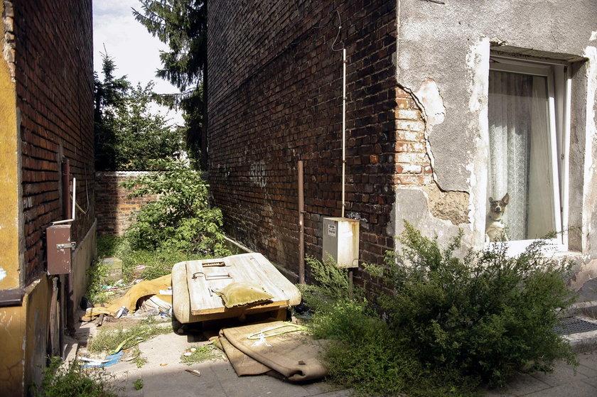 Śmieci na gdańskiej Oruni