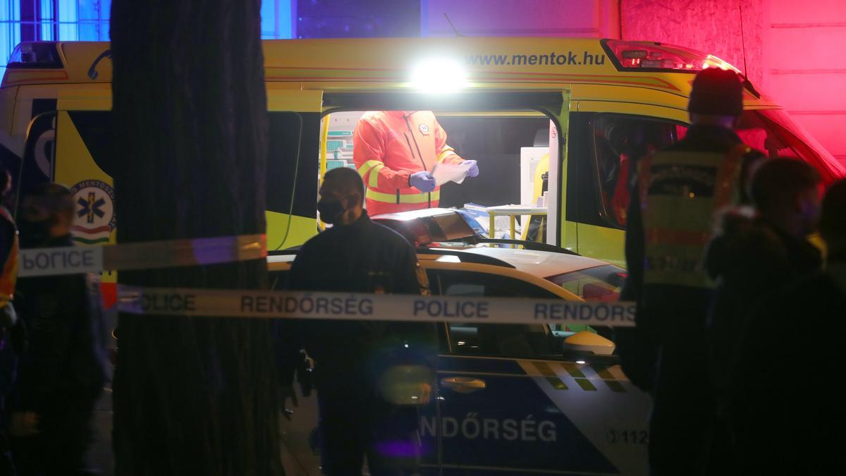 A halálos döfés mellett tizenhét késszúrást kapott a Telepy utcában meggyilkolt fiú: utolsó erejével édesanyjának kiáltott - videó