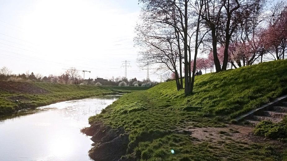 Rzeką Ślęza