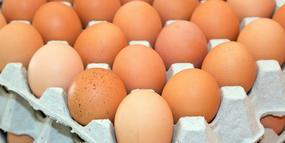Jaja z bakterią salmonelli wycofane z obrotu. Część z nich sprzedano w Biedronkach