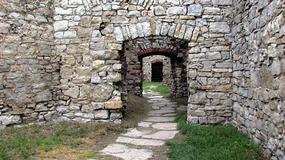Zamek w Lipowcu