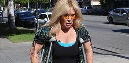 Żona Hasselhoffa pogryziona przez psy