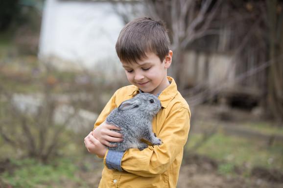 Ućenici će moći da naprave i mini zoo vrt u svojoj školi