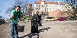 Pod Wawelem zakwitnie papieska łąka
