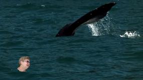 Pływała z wielorybami i latała na magicznym dywanie. Oto mistrzyni wirtualnych podróży!