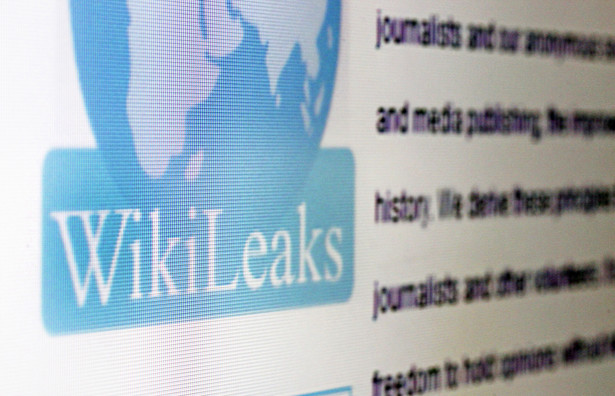"""Rewelacje te ujawnił w sobotę """"Daily Telegraph"""", powołując się na przecieki demaskatorskiego portalu Wikileaks oparte na amerykańskich depeszach dyplomatycznych."""
