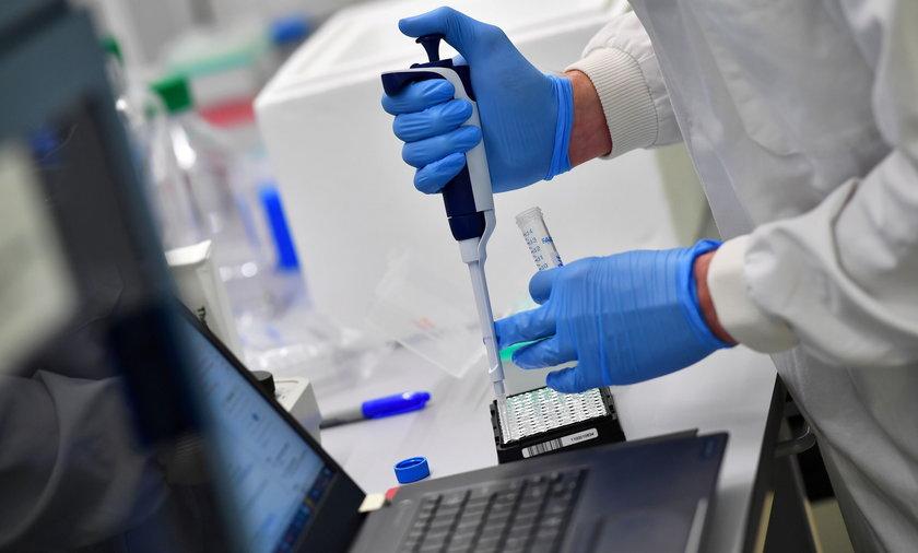 Naukowcy zidentyfikowali nowy wariant koronawirusa. Jest bardziej zakaźny.