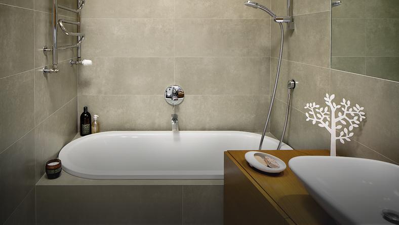 świetnie Urządzona Wąska Ciemna łazienka Dom