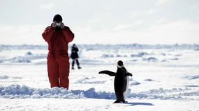 Wycieczka na Antarktydę: najdroższy snobizm?