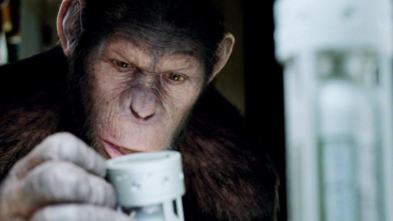 """""""Geneza Planety Małp"""" to już siódmy film serii"""