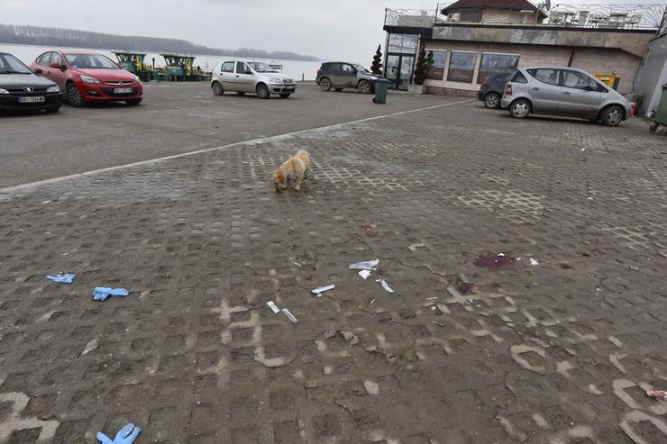 Ada Huja kucici 09 foto RAS Snezana Krstic