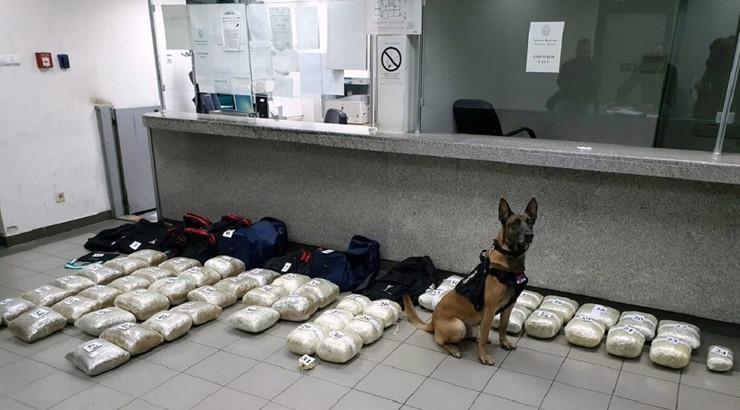 Neron pored otkrivene droge na Horgošu, zaplena