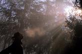 jutarnja magla u beogradu