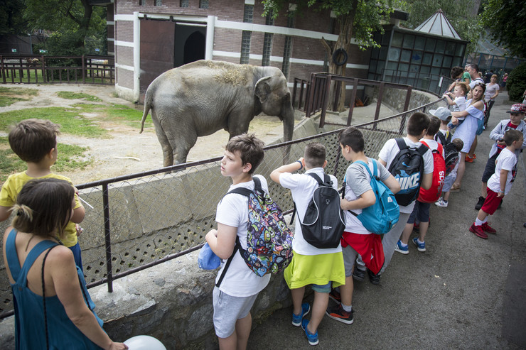 zoo vrt01_foto vladimir zivojinovic