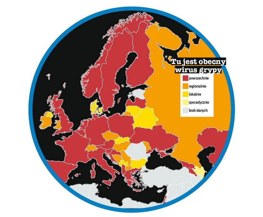 Wirus grypy rozprzestrzenił się powszechnie niemal w całej Europie