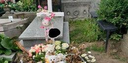 Potwór okradł grób 8-miesięcznej dziewczynki!