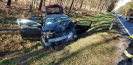 Kolejna tragedia na Dolnym Śląsku! Kierowca nie miał szans