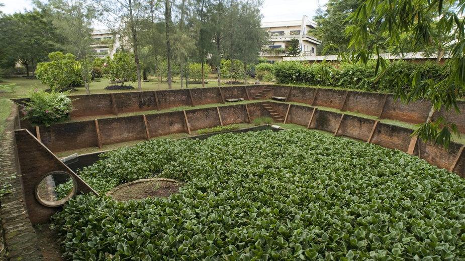 Roślinne oczyszczalnie ścieków