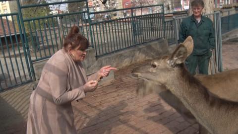 HIT SNIMAK: Odveli smo Nadu Macuru u zoološki vrt, a ona je tamo napravila pravi šou!