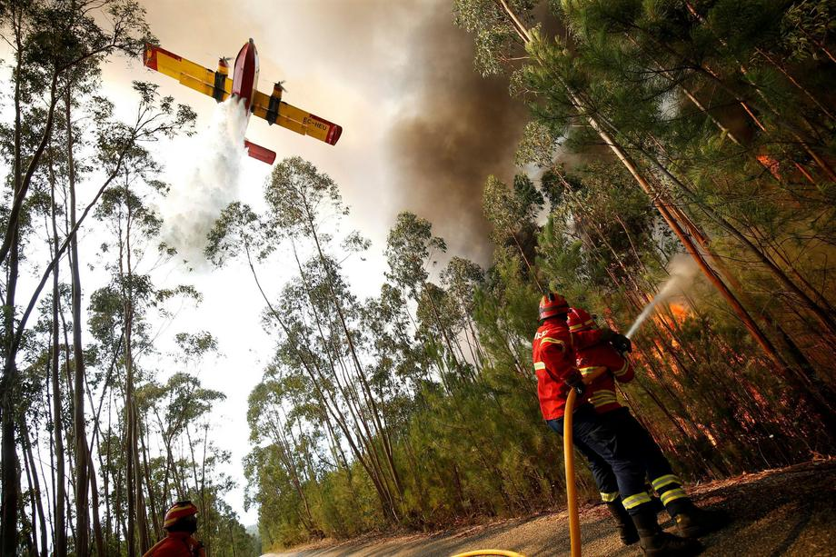 Firefighters work to put out a forest fire next to the village of Macao