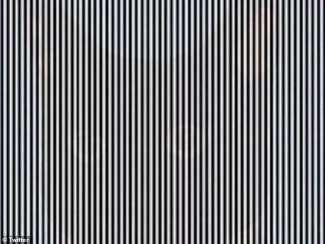 Optička iluzija