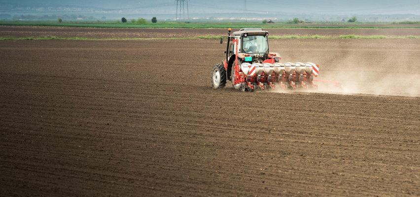 Ceny nieruchomości idą w górę. Kto może kupić ziemię rolną?