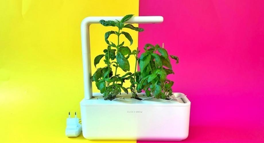 Click&Grow 3 im Test: Smarter Garten mit dummer App