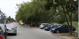 Nie wytną drzew, żeby zbudować parking