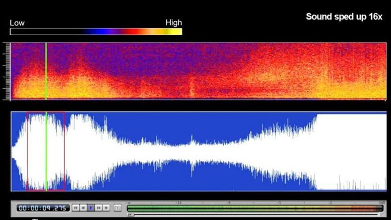 Naukowcy nagrali odgłos trzęsienia ziemi w Japonii