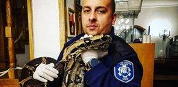 Zamiast broni znaleźli węże boa