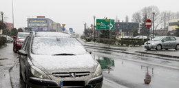 Śnieżyca na Śląsku