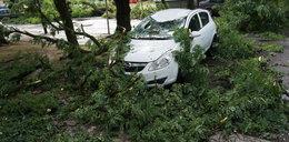 Nawałnica przeszła nad Łodzią. Zobacz zniszczenia