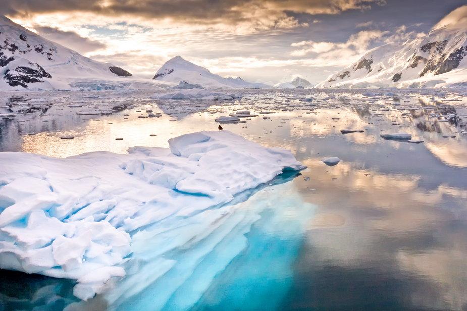 Paradise Bay, Antarktyda