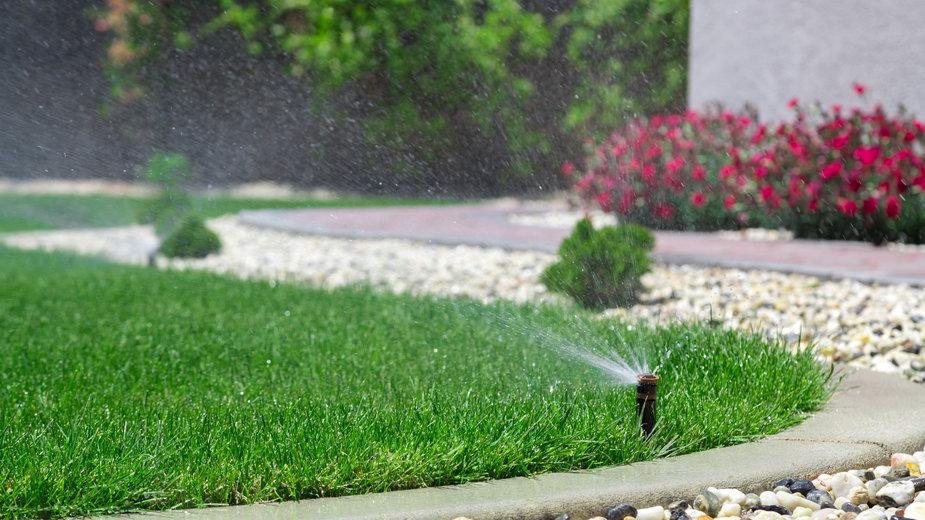 Nawadnianie trawnika to jeden z podstawowych zabiegów pielęgnacyjnych - Mariusz Blach/stock.adobe.com