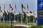 Šef kancelarije Nato za vezu: Odluka je na Srbiji ako želi ili ne želi u Alijansu
