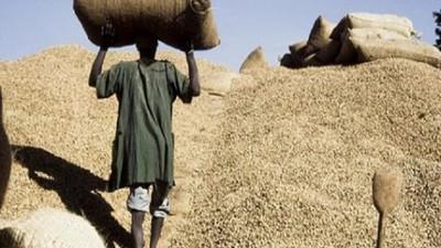 Filière arachidière: 2 milliards Fcfa volés