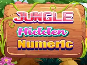 Jungle Hidden Numerics