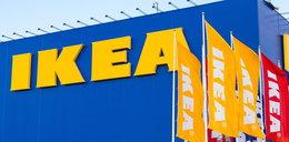 IKEA będzie tym teraz karmić klientów. Nie uwierzycie!