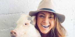 Przyjaźń kobiety i świnki. Zwierzę ratuje jej życie