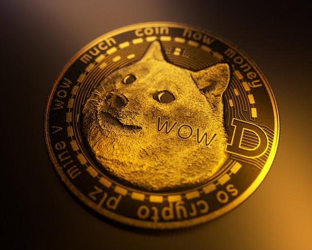 Kryptowaluta Dogecoin